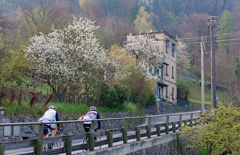 Ciclisti lago di Como